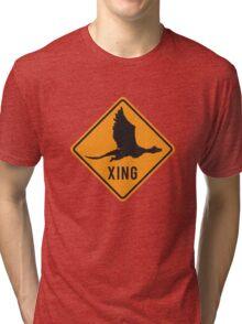 Crypto Xing - Dragon Tri-blend T-Shirt