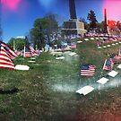 Panoramic Flags by Nicole Gesmondi