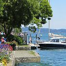 A postcard from Germany (Überlingen am Bodensee) by bubblehex08
