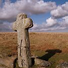 Dartmoor: Crosses Series - Skaur Ford  by Rob Parsons
