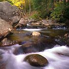 Rocks Highlight Stinson Brook   by Wayne King