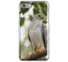 The Search For Prey iPhone Case/Skin