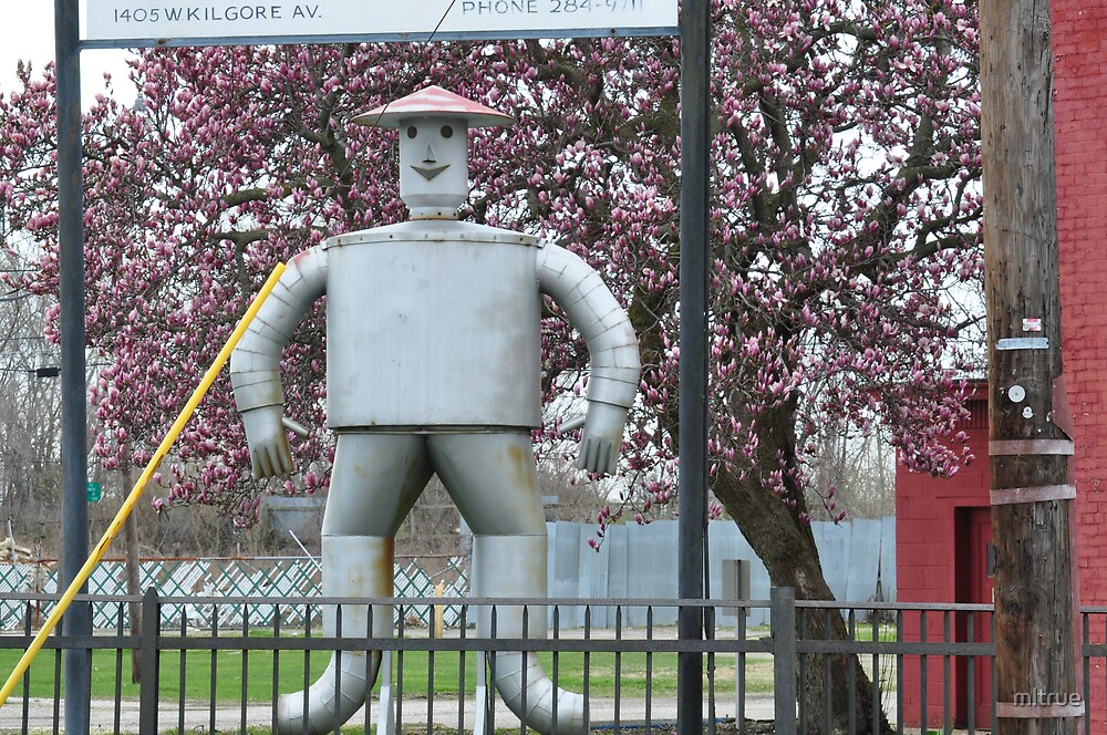 The Tin Man and the Tulip Tree by mltrue