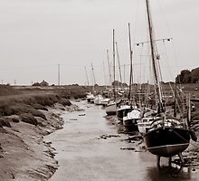 High and Dry, Gibraltar Point, Lincolnshire by Steve Rhodes