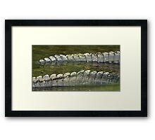 Alligator tails Framed Print