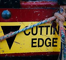 Cutting Edge - Farm Equipment Photograph by wetdryvac