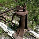 Old Railroad Switch by Larry Trupp