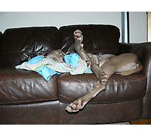 Comfortable? Photographic Print