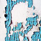 Breakdown of a Forgotten Blue Wall by Nicole Gesmondi