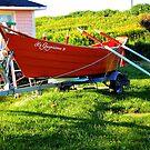 Red Boat by terrebo