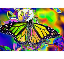 Psychedelic Monarch Photographic Print