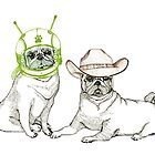 Cowboys & Aliens by ankastan