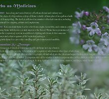 Herbs as Medicine - Thyme by cdwork