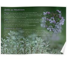 Herbs as Medicine - Thyme Poster