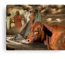 PHAROAH'S DREAM..GENESIS 41:1-36-DREAM OF THE 7 COWS-WE ARE IN THE YEAR OF THE SHEMITAH-BIBLICAL WARNING-TWO CALFS BORN WITH THE NUMBER 7..COINCIDENCE?? I THINK NOT!! Canvas Print