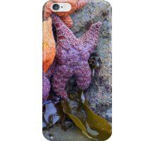 Rainbow starfish iPhone Case/Skin