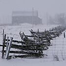 Fence in an April Snow.......... by Larry Llewellyn