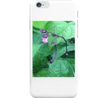 Purple Green Bean iPhone Case/Skin
