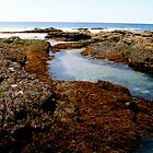 Valla Beach-East Coast Australia by sweetcorn