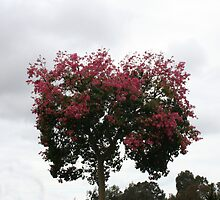 Pink Tree by Kristin Hamm