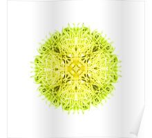 """""""Spirit of India: Mandala Fleur-Web"""" in grass green and yellow Poster"""