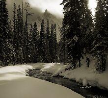 Yoho Winter Scene by Robert Mullner
