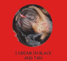 Rottweiler's Dream In Black and Tan by taiche