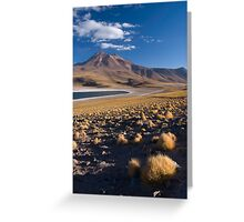 Lagunas Miñiques y Miscanti - Chile Greeting Card