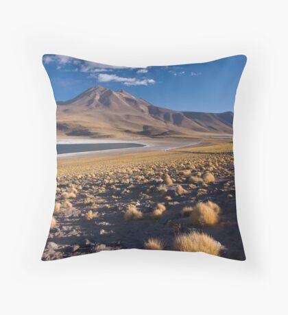 Lagunas Miñiques y Miscanti - Chile Throw Pillow
