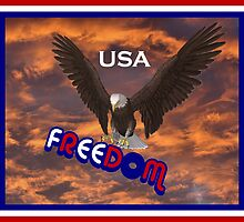 Freedom USA by SmilinEyes