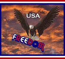 Freedom USA by SmilinEyes