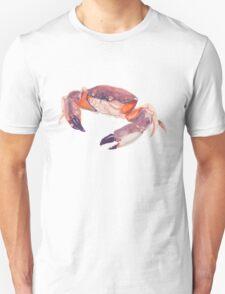 Florida Stone Crab T-Shirt
