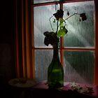 Kitchen Window  by scarletjames