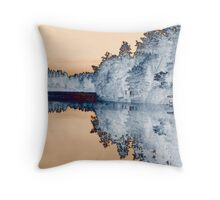 Lake Hayward Throw Pillow