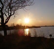 as the sun sets by velveteve