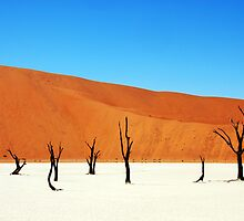 Dead Vlei, Sossusvlei, Namibia by DJ Church