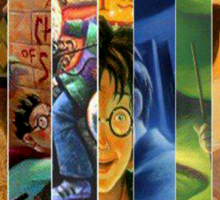 Harry Potter Book Collection Sticker