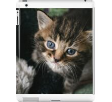 Milk Chin iPad Case/Skin
