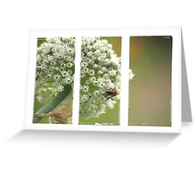 *florets* Greeting Card