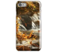 Boyer Creek Montana iPhone Case/Skin