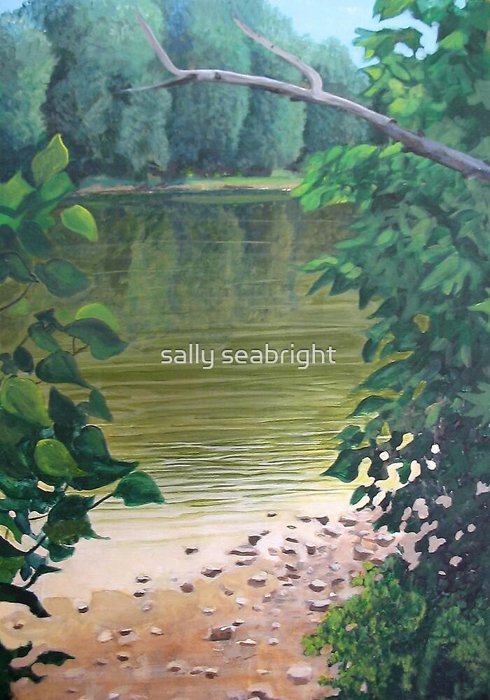 Shenandoah River 3 by sally seabright
