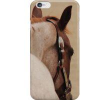 Roan Quarter Horse iPhone Case/Skin