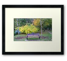Lonely bench Framed Print