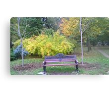 Lonely bench Metal Print