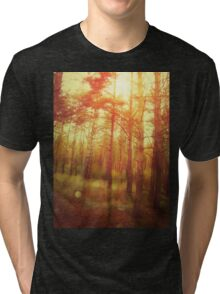 Sunset Forest Tri-blend T-Shirt