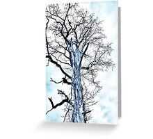 Veins of Bark Greeting Card