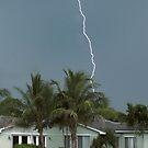 Lightning strike by Larry  Grayam