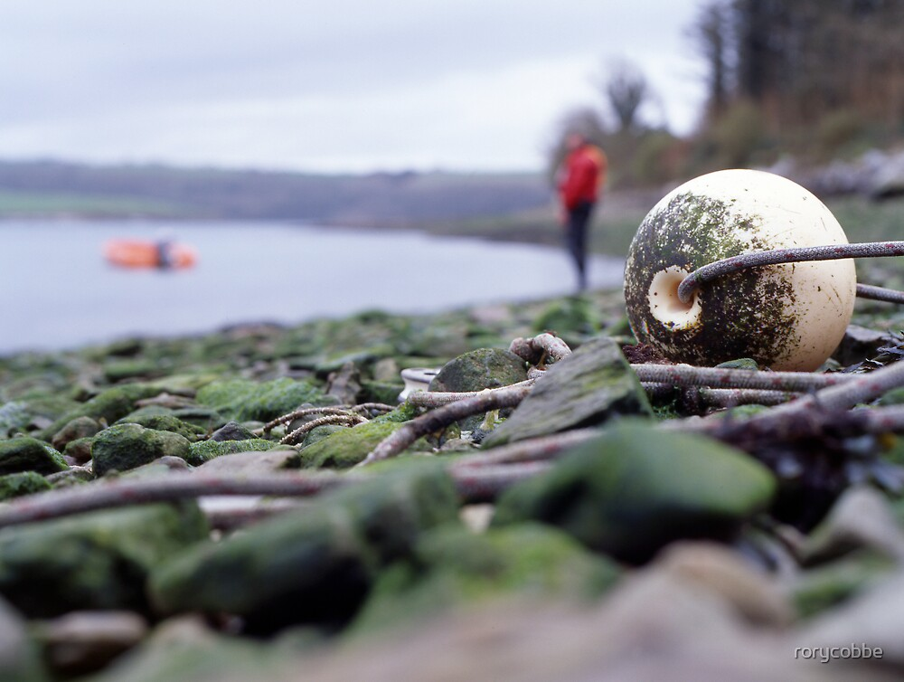 Oh bouy! by rorycobbe