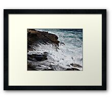 Froth and Fangs Framed Print
