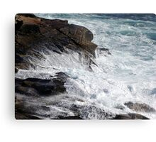 Froth and Fangs Metal Print